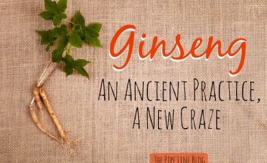 Piping Rock Ginseng
