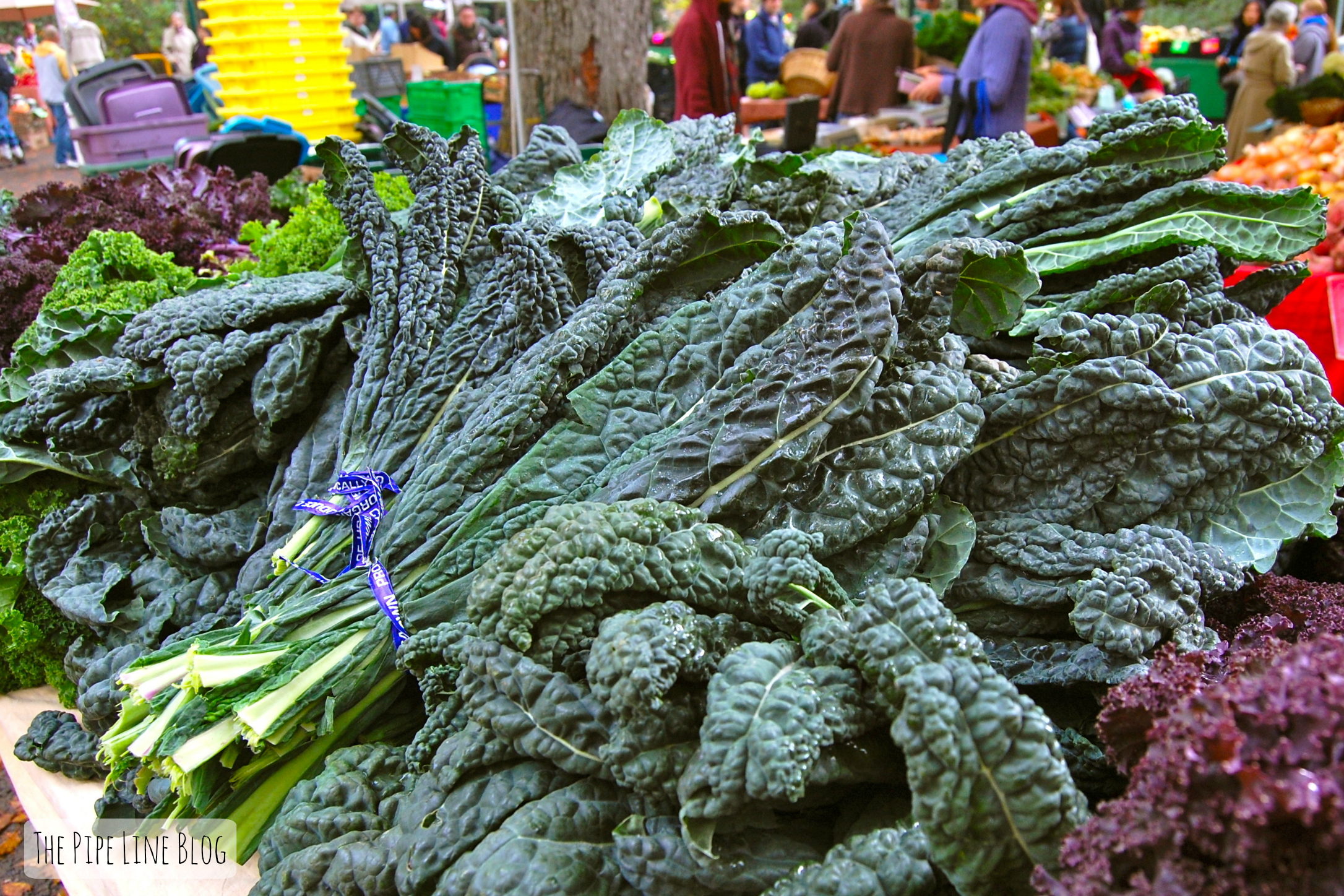 Piping Rock - The Pipe Line - Kale Superfood