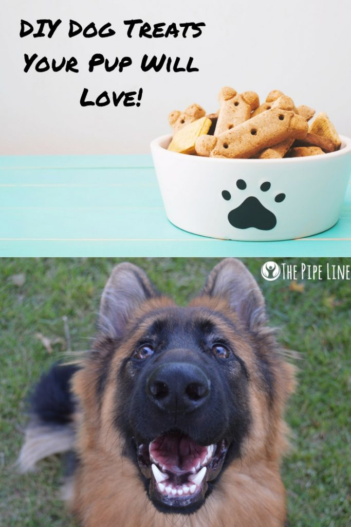 DIY Dog Treats...