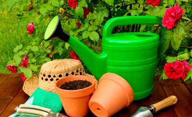 Piping Rock - The Pipe Line - 3 Essentials for Your Gardening Tool Belt to Enhance Your Garden Naturally