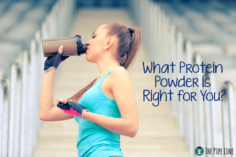 protein powder types