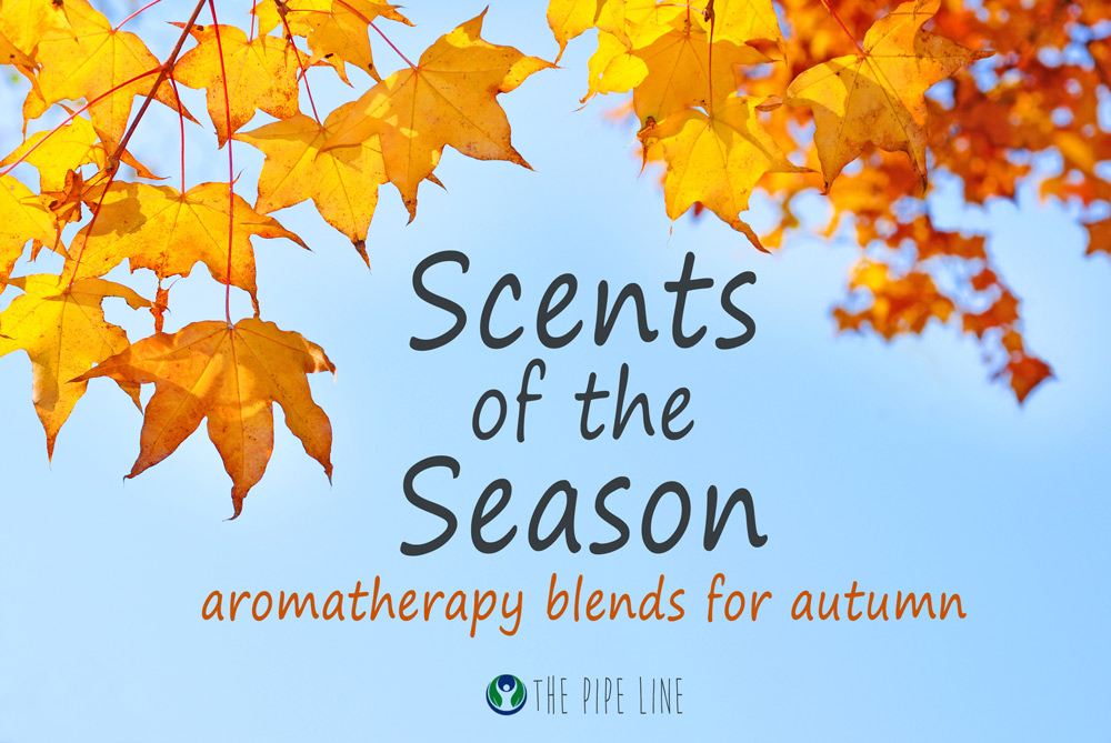 Piping Rock - The Pipe Line - Scents of the Season - Aromatherapy Blends for Fall