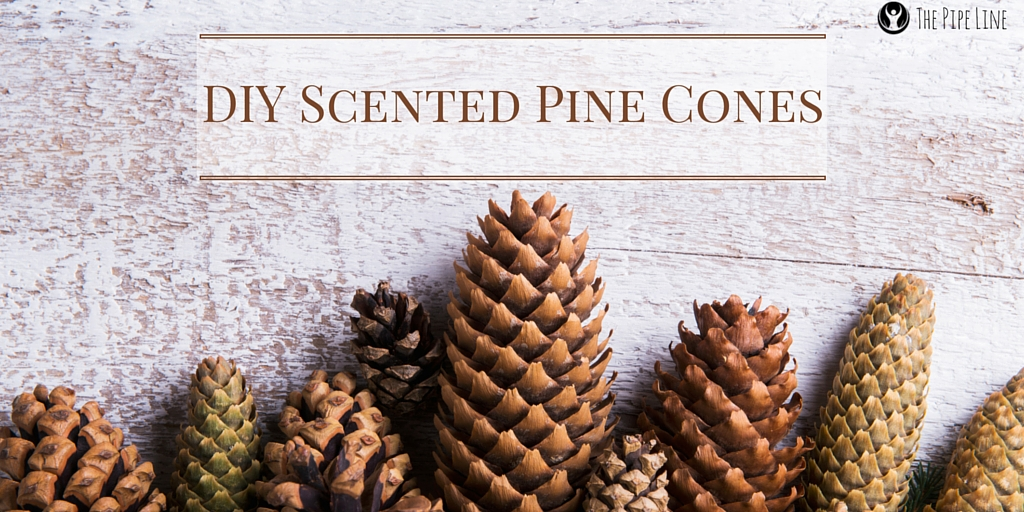 DIY SCENTED PINE CONES #Piping...